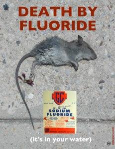 Flúor em veneno de rato